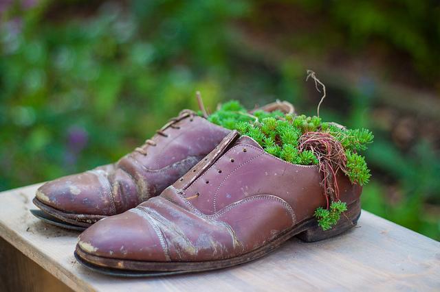 Chaussures fleuries par Flickr - tangi_bertin