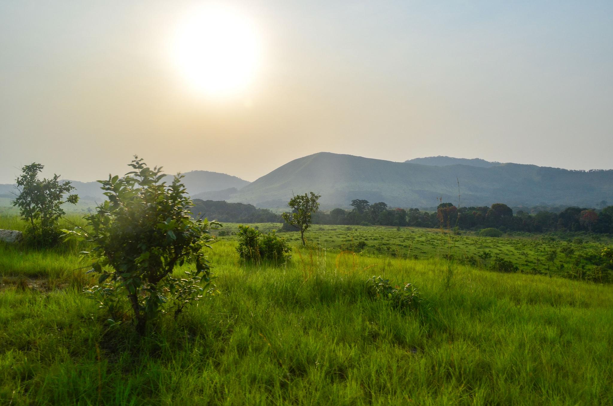 Paysage de la réserve de la Lopé au Gabon