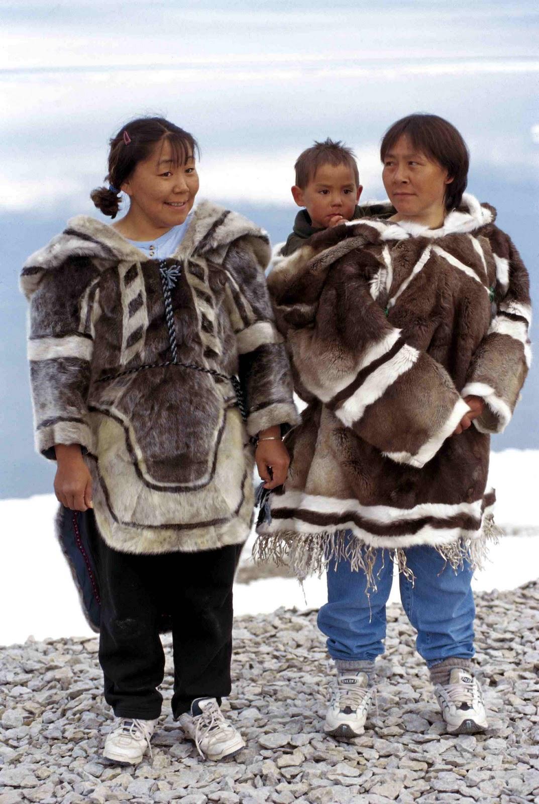 Quotidien de la vie arctique : What ze phoque ?