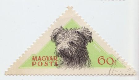 Magyar_Posta-Dog