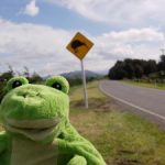 tour-monde-froggy-nz